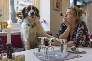 Ad    På Café Himmelska Hundar