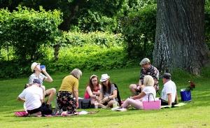Natursamvaro på Drottningholm