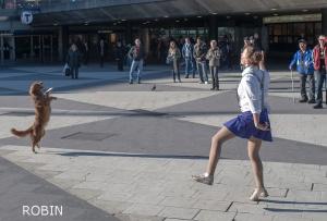 Dansuppvisning på Plattan