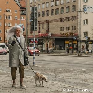 Trollet Plupp går ett varv med hunden